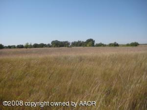 140 CRP Acres Grass; 16 Acres Creek Draw