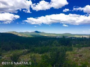 1688 Canyon View LOOP