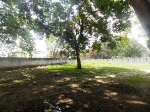 Terreno en Valencia Carabobo,Tocuyito REF: 14-5888