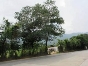 Terreno en Valencia Carabobo,Guataparo REF: 14-8178