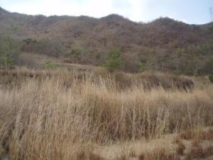Terreno en Municipio Naguanagua Carabobo,El Rincon REF: 14-10530