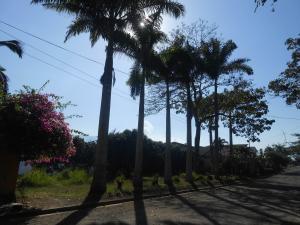 Terreno en Municipio Naguanagua Carabobo,Carialinda REF: 15-2378