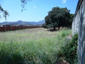 Terreno en Guacara Carabobo,Vigirima REF: 15-6514