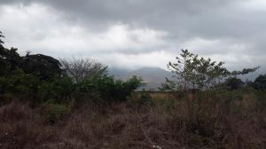 Terreno en Municipio San Diego Carabobo,Valles del Nogal REF: 15-6981