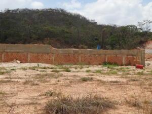 Terreno en Valencia Carabobo,Guataparo REF: 15-6988
