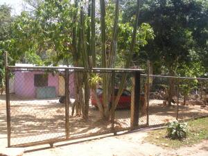 Terreno en Municipio Bejuma Carabobo,Bejuma REF: 15-7054