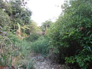 Casa en Maracay Aragua,El Limon REF: 15-7812