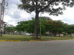 Terreno en Municipio San Diego Carabobo,Monteserino REF: 15-10951