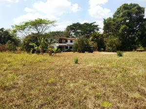 Terreno en Municipio Bejuma Carabobo,Bejuma REF: 16-2735