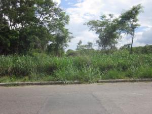 Terreno en Valencia Carabobo,Colinas de Guataparo REF: 16-10362