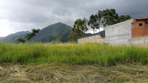 Terreno en Municipio Naguanagua Carabobo,La Entrada REF: 16-10715