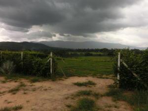 Terreno en Municipio Bejuma Carabobo,Bejuma REF: 16-11008