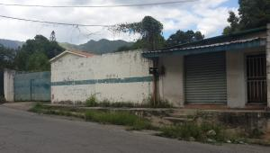 Terreno en Maracay Aragua,El Limon REF: 16-11495