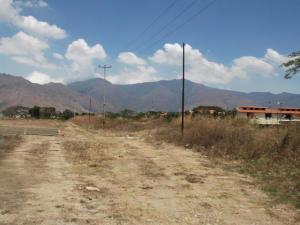 Terreno en Municipio San Diego Carabobo,Pueblo de San Diego REF: 16-15043