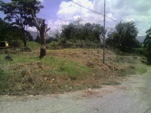 Terreno en Municipio Naguanagua Carabobo,Carialinda REF: 16-15860