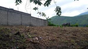 Terreno en Municipio Naguanagua Carabobo,Carialinda REF: 16-16290