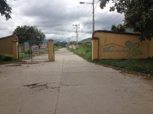 Terreno en Municipio San Diego Carabobo,La Cumaca REF: 16-16789