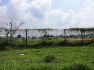 Terreno en Cabimas Zulia,Carretera H REF: 17-268