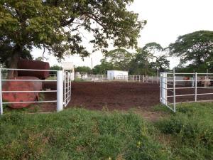 Terreno en Machiques Zulia,La Sabana REF: 17-284