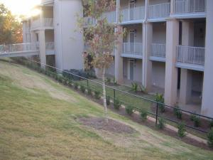 Example of street side landscaping
