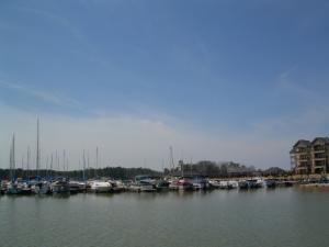Harbor Pointe Marina is right next door