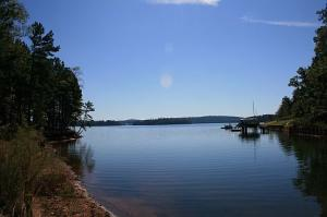 view of lot for sale the ridge lake martin