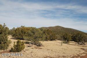 00 N Buck Ridge -- -, Williams, AZ
