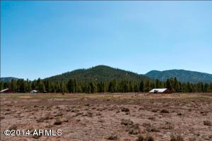000 Last Water Trail TRL 17N, Parks, AZ